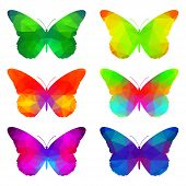 Colorful Butterflies With Triangular Geometric  Pattern