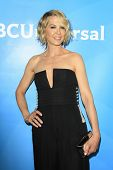 PASADENA - APR 8: Jenna Elfman at the NBC/Universal's 2014 Summer Press Day held at the Langham Hote