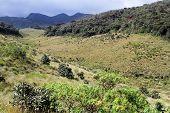 foto of ravines  - View of ravine in the Horton plains national park Sri Lanka - JPG