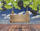 Wood sign, vineyard with blue sky and wooden floor