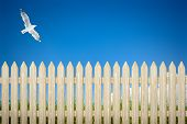 stock photo of bird fence  - An image of a private fence background - JPG