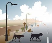 stock photo of stray dog  - Illustration of a motley group of stray dogs on a lonely road - JPG