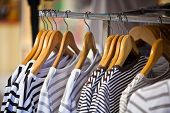 foto of pullovers  - Striped Female Pullovers in a Clothing Store - JPG