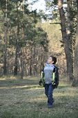 stock photo of little boys only  - Spring in the pine forest a little curly boy for someone watching - JPG