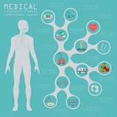 image of respiratory  - Medical and healthcare infographic - JPG