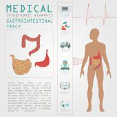 pic of gastrointestinal  - Medical and healthcare infographic - JPG