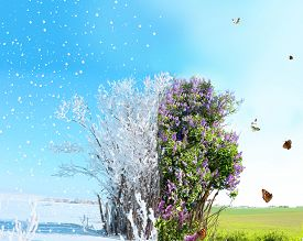 stock photo of spring-weather  - Season change from winter to spring - JPG