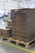 foto of assembly line  - Folded cardboard boxes are made up in the assembly hall - JPG