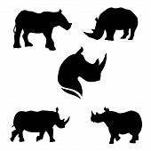 image of rhino  - Rhino set of black silhouettes - JPG