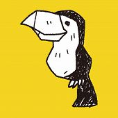 pic of toucan  - Toucan Doodle - JPG