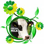 picture of cow head  - Round symbol with a head of cow and text fresh milk green and yellow flowers with leafs - JPG