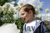 stock photo of candy cotton  - Boy with cotton candy in the park - JPG