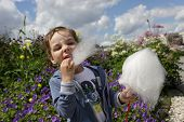 pic of candy cotton  - Kid eating cotton candy in the park - JPG