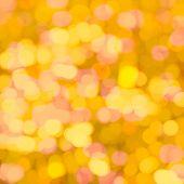 picture of pentecostal  - Defocused flower meadow in sunlight - JPG