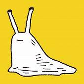 image of slug  - Slug Doodle - JPG