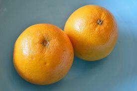 image of valencia-orange  - Two valencia oranges in a blue bowl - JPG