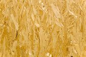 Oriented Strand Board (OSB), popular construction material