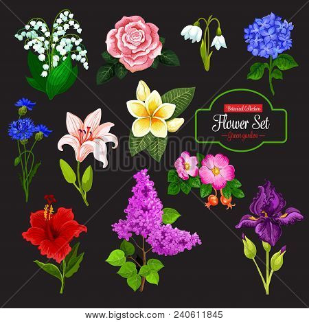 Spring Flower Cartoon Icon Set