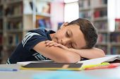Young boy sleeps on library desk. Tired pupil fell asleep while studying on table with books. Cute c poster