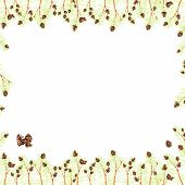 Thin Frame Of Light Pine Branches Pine Needles Fir With Brown Watercolor Drawing Pine Cones Cedar Is poster