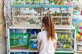 Little girl looking at birds in cages for sale at Birds market in Souq Waqif Doha, popular tourist d poster