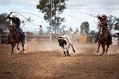 Two Cowboys Calf Roping At A Country Rodeo poster