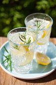 refreshing lemonade drink with rosemary in glasses poster