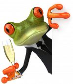 picture of glass frog  - Frog and champagne - JPG