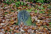 Landmark With The Number 39 On A Field In Autumn. Landmarks Serve To Mark Parcels And Land In Order  poster