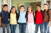 picture of pre-teen boy  - Pre teen children at school - JPG