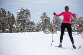Cross-country skiing: young woman cross-country skiing on a winter day poster