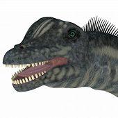 Sauroposeidon Dinosaur Head 3d Illustration - Sauroposeidon Was A Sauropod Herbivorous Dinosaur That poster