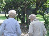 pic of elderly woman  - two elderly women walking in the park - JPG