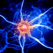 picture of nerve cell  - Illustration of a nerve cell on a colored background with light effects - JPG