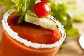 image of bloody mary  - Spicy Bloody Mary Alcoholic Drink with a tomato garnish - JPG