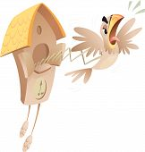 picture of angry bird  - A cartoon piessed off cuckoo jumping out of the old clock announcing time - JPG