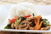 picture of gai  - fried basil chicken and rice  - JPG
