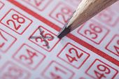 foto of money prize  - Close-up Of A Person Marking Number On Lottery Ticket With Pencil