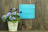 image of flower pots  - Blank antique teal sign by potted flowers (pansy) next to wooden fence ** Note: Soft Focus at 100%, best at smaller sizes - JPG