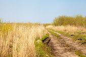 stock photo of tallgrass  - ong winding country road through tall grass prairie pasture - JPG