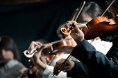 foto of orchestra  - Symphony orchestra violinists performing on stage against dark background - JPG
