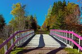 picture of trans  - Bridge over a brook on the Confederation Trail in rural Prince Edward Island - JPG