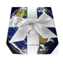 stock photo of stewardship  - The earth wrapped in a gift box - JPG