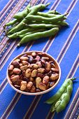 stock photo of bean-pod  - Roasted broad beans  - JPG