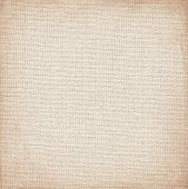 picture of canvas  - canvas with delicate grid to use as grunge background or texture - JPG