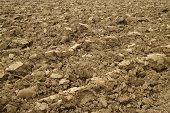 pic of plowed field  - Plowed field along a river side in the center of Italy - JPG