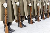 picture of trooper  - Bulgarian troopers are standing in lines during a rehearsal - JPG
