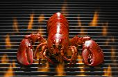stock photo of lobster  - Fresh red lobster on a wood plank over a hot flaming barbecue grill - JPG