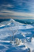 image of snow clouds  - Winter Carpathian mountains all covered with snow in the sky beautiful clouds. tree icy snow
