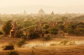 image of mustering  - Burmese herder leads cattle herd through sunset landscape with ancient Buddhist pagodas at Bagan - JPG